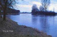 Hochwasser an der Leine